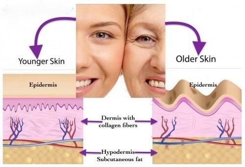 خواص-کلاژن-برای-پوست